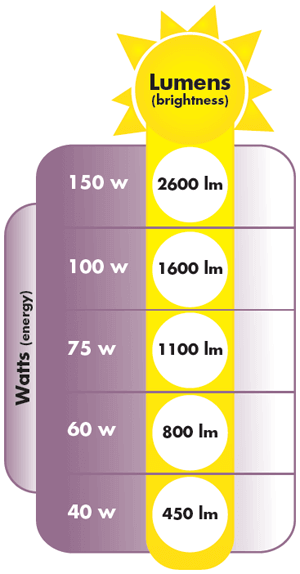 lumens scale klm lighting - Bulb Shape Bulb Size Bulb Base and Characteristics of Light